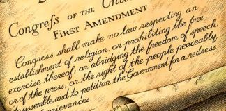 Bill of Rights Article 1