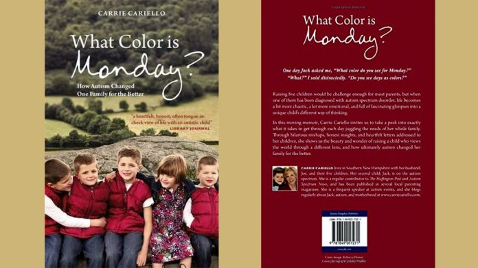 What Color is Monday? by Carrie Cariello