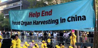 Helped End Forced Organ Harvesting in China