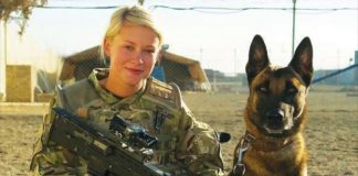 Mission K9 Rescue: Serving our Nations Working Dogs