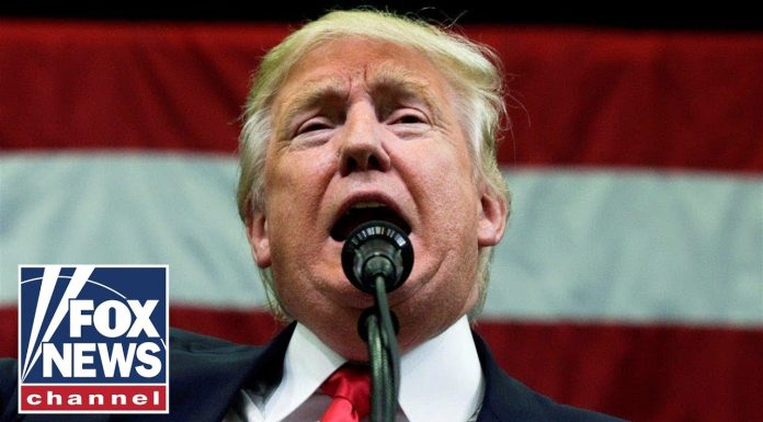 President Trump speaks at the New York City Veterans Day Parade