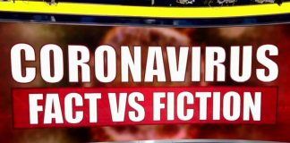 Coronavirus Fact vs Fiction
