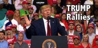 Trump Rallies