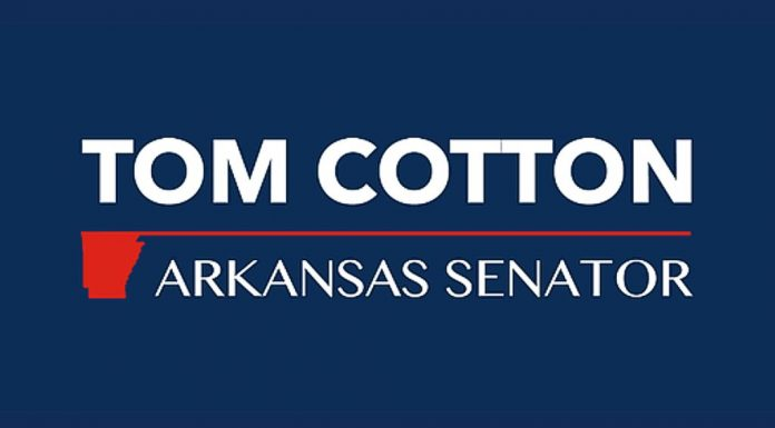 Tom Cotton Arkansas Senator