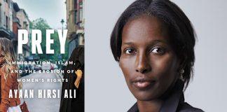 Prey by Ayaan Hirsi Ali