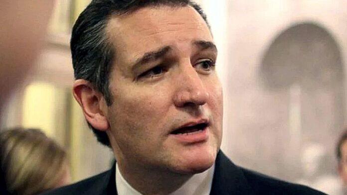 Ted Cruz 2015