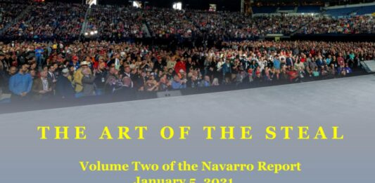 The Art of the Steal by Peter Navarro - Volume Two of the Navarro Report