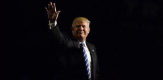 Donald Trump Wave