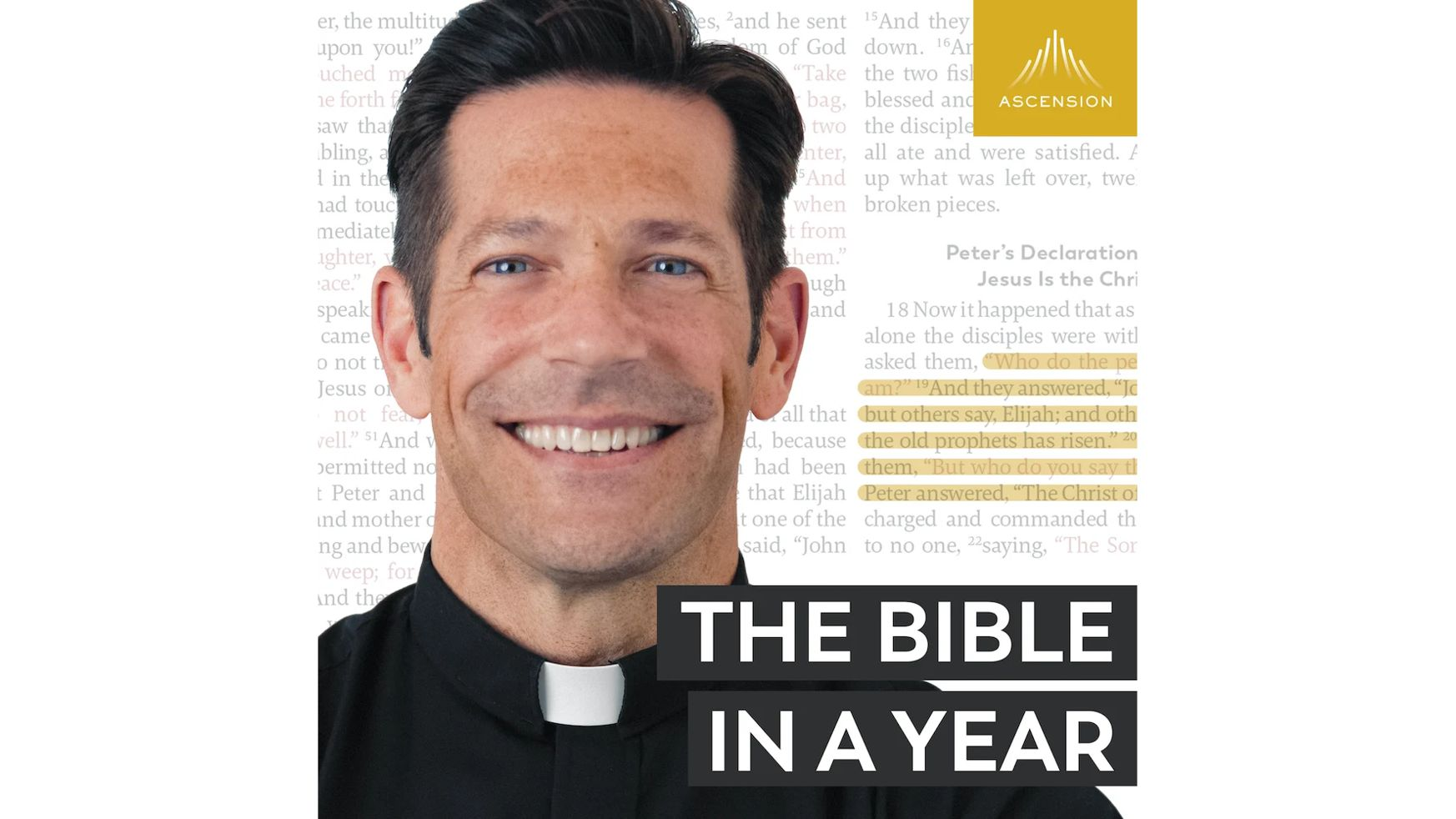 The Bible in a Year with Fr. Mike Schmitz