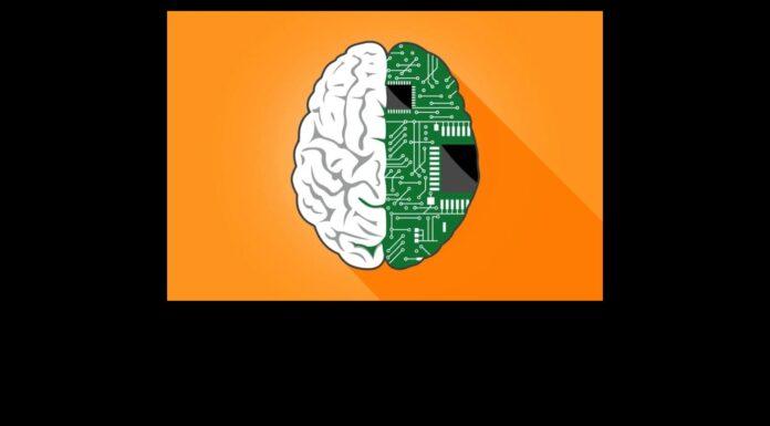 Transhumanist Brain
