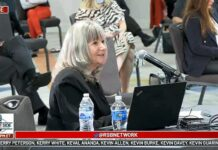 Jan Bryant election hearing witness