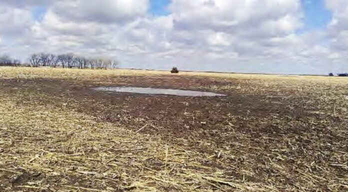 A mud puddle located on the farm of Arlen and Cindy Foster