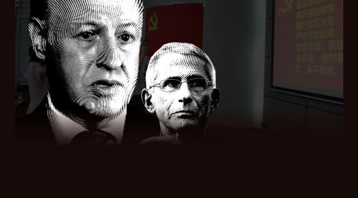 Peter Daszak and Anthony Fauci