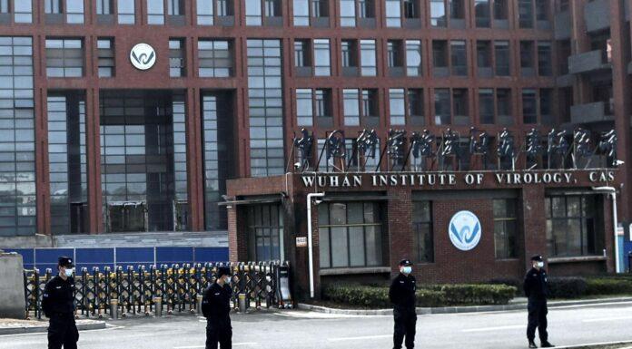 Wuhan Institute of Virology Lab