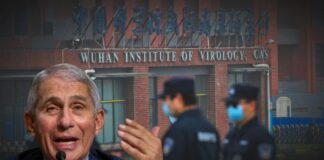 Fauci and Wuhan Institute of Virology