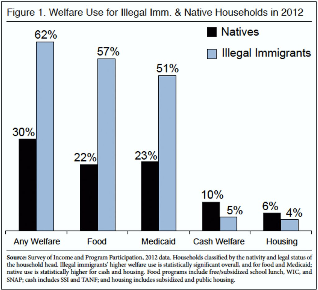 Welfare Use For Illegal Immigrants & Native Households