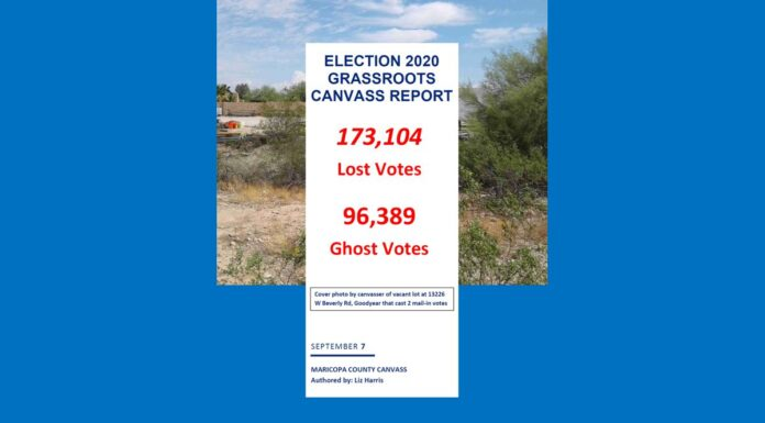 Election 2020 Grassroots Canvass Report