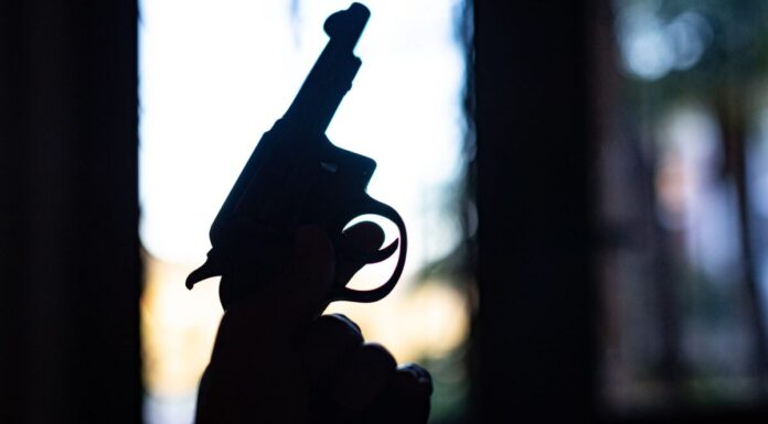 32 Caliber Handgun