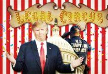 Legal Circus