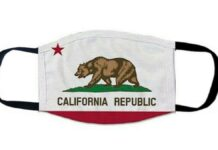 State of California Flag Face Mask